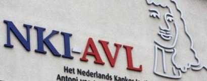 10 kV project NKI-AVL